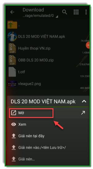 Dream league soccer 2020 mod vietnam-hinh 2